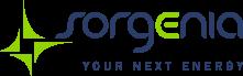 Sorgenia - Your Next Energy